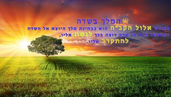 תוצאת תמונה עבור תמונות חודש אלול המלך בשדה