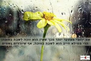 סוכה בגשם