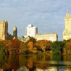 לטייל בסטנרל פארק  ניו יורק
