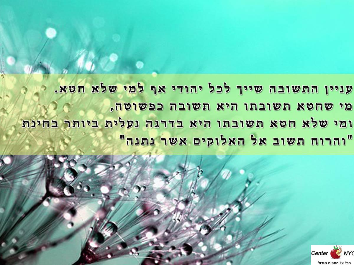 עניין התשובה שייך לכל יהודי אף למי שלא חטא