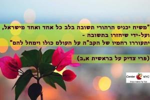 פרי צדיק על המשיח גאולה ותשובה