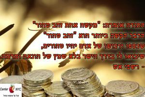 שכספו ורכושו של אדם יהיו טהורים