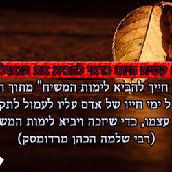 להביא לימות המשיח – מתוך ההגדה של פסח