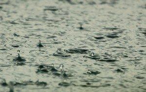 נח המבול והמקווה