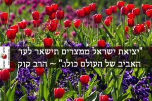 """""""יציאת ישראל ממצרים תישאר לעד האביב של העולם כולו."""" ~ הרב קוק"""