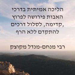 להוסיף מעבר לייחוס – רבי מנחם-מנדל מקוצק