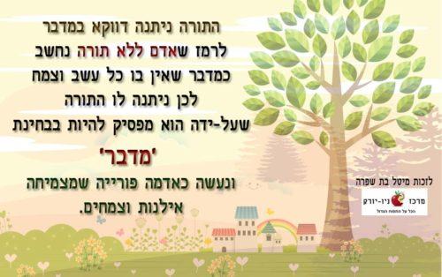 למה התורה ניתנה במדבר – חג השבועות – דבר תורה קצר לחג השבועות