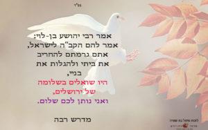 ירושלים של שלום