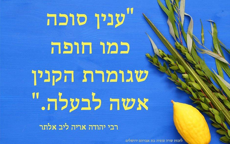 """חג הסוכות – לקט משפטים מחזקים לחג האסיף – פתגמי חז""""ל"""