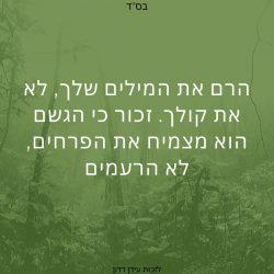 ציטוטים מהיהדות