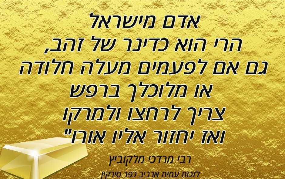 ציטוט רבי מרדכי מלקוביץ
