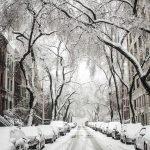 שרון טיילה לבד בניו יורק בחורף וחזרה לספר
