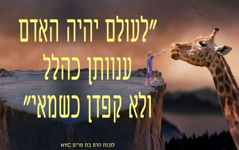 לעולם יהיה האדם ענוותן כהלל ולא קפדן כשמאי