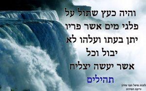 ספר תהילים על מים